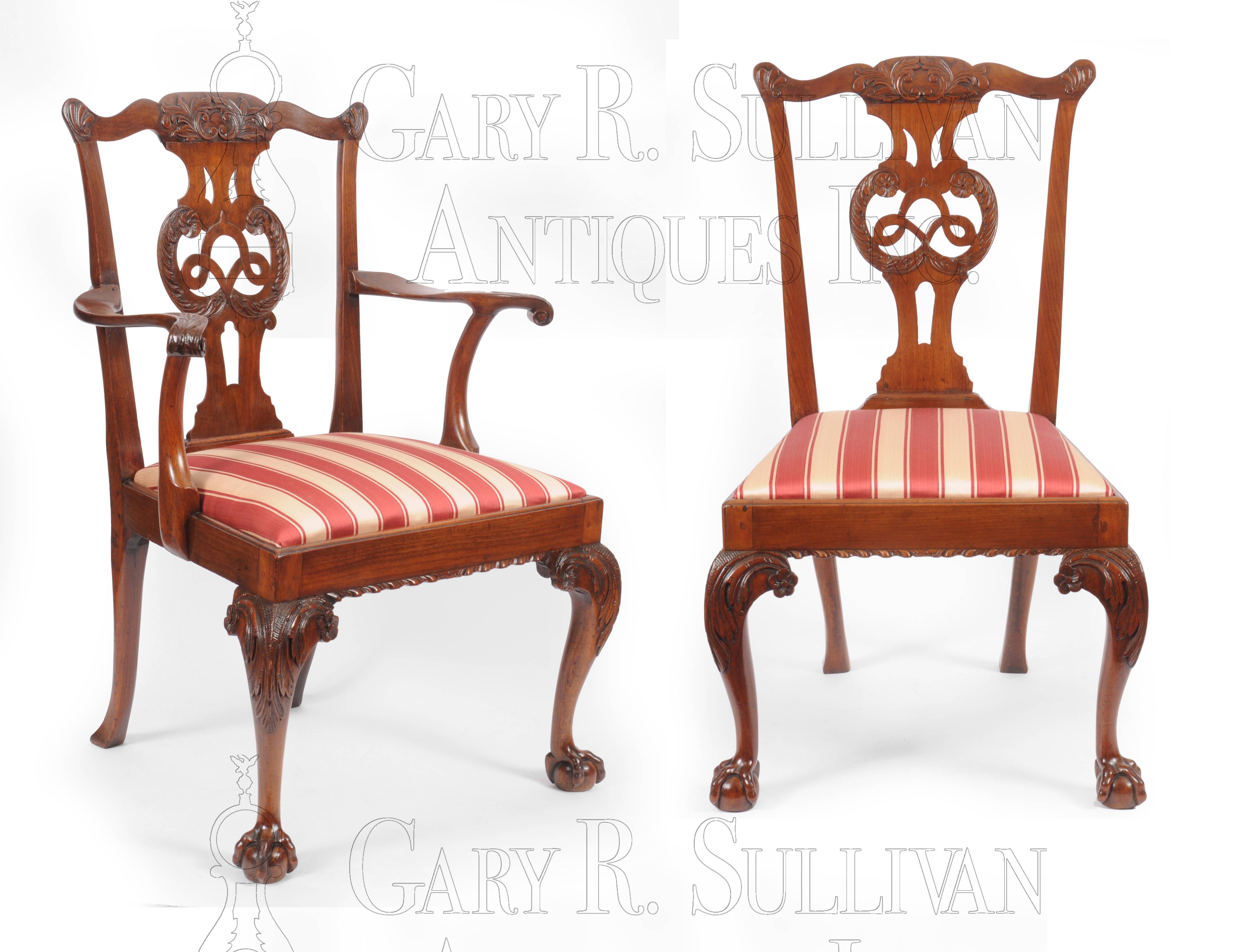 chippendale dining chairs. Chippendale Dining Chairs A